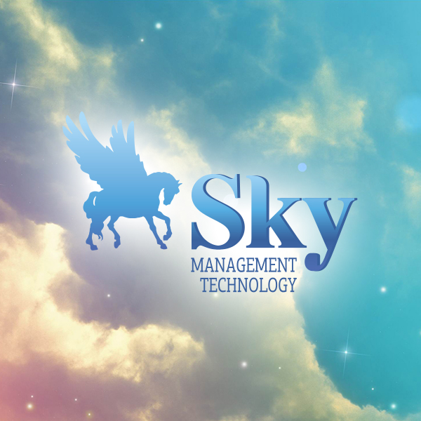"Сайт компании ""Sky Management Technology"""